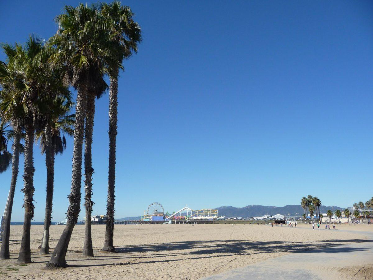 Lunga spiaggia di Santa Monica con palme