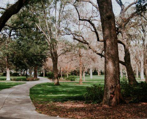 5 motivi per i quali visitare Savannah in Georgia, USA