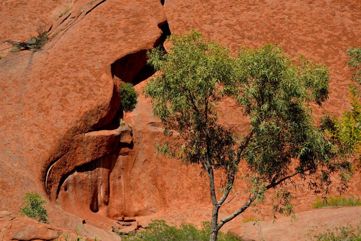 forme sinuose Uluru classifica Australia