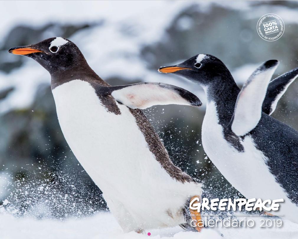 Calendario Greenpeace 2019 animali mondo solidarietà ecologia ecosistema promozione sponsor