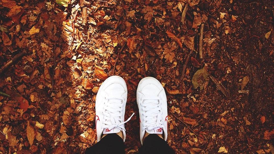 Tutto il necessario per l'autunno in Finlandia viaggi viaggio consigli cosa sapere cosa fare abbigliamento blog suggerimenti cosa indossare indispensabile meteo temperature Zalando scarpe Nike